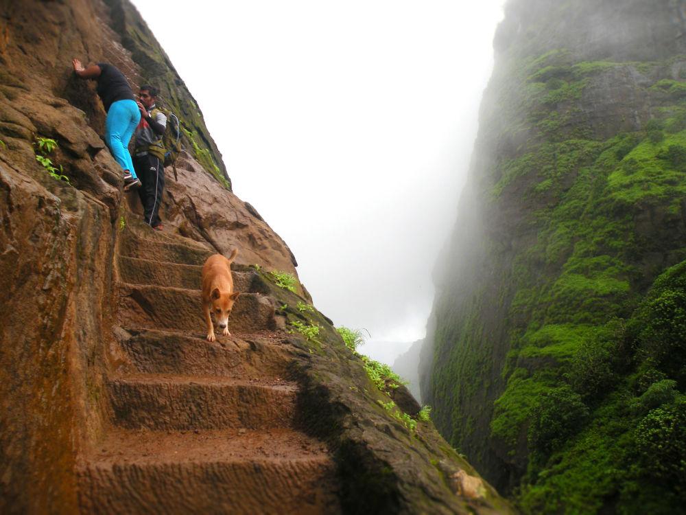 通往印度卡拉凡丁·杜尔格山顶峰的阶梯