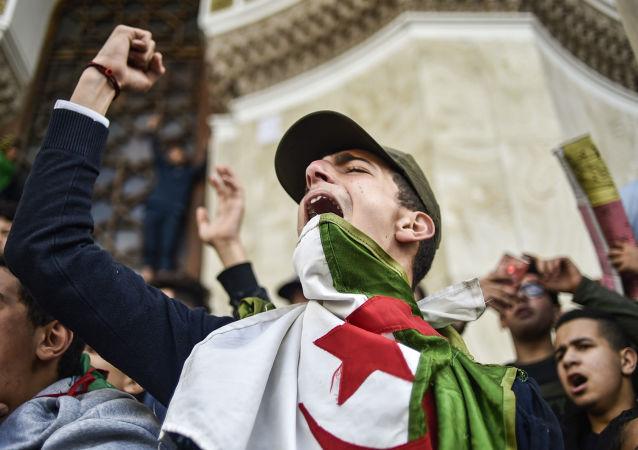 阿爾及利亞政治危機久懸不決或致激進伊斯蘭主義勢力增強