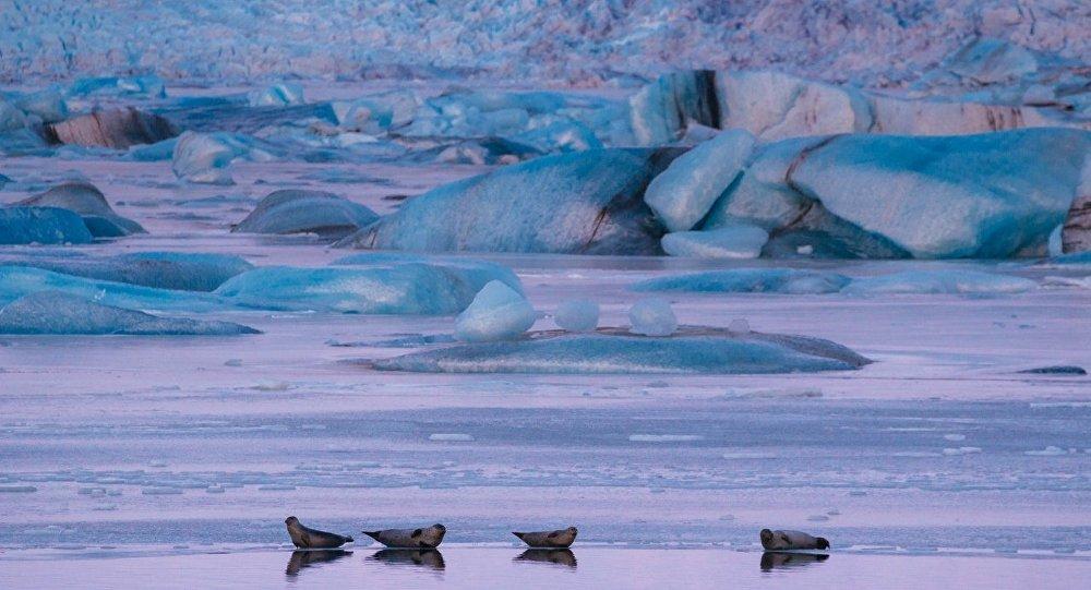 聯合國報告:氣候變化將致數百萬人將過早死亡
