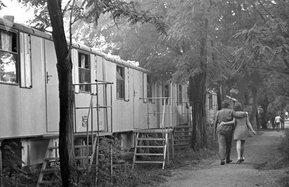 1976年,一对年轻情侣前往奥伦堡天然气管道建设者的定居点