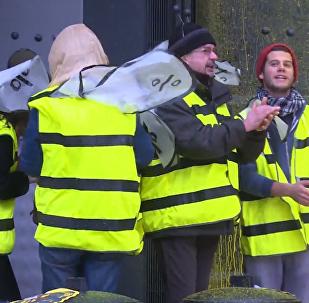 法国民众在拜耳公司总部示威抗议