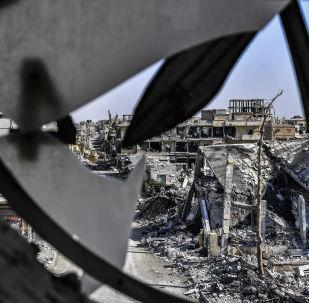 俄总统叙问题特别代表:打击叙境内恐怖分子的问题并未从议程中删除