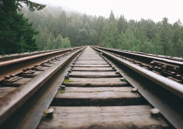 專家:實現鐵路合作是上合組織發展的必要條件