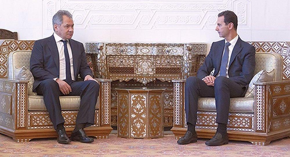 叙利亚总统:叙俄两国在政治军事领域的协调达到很高水平