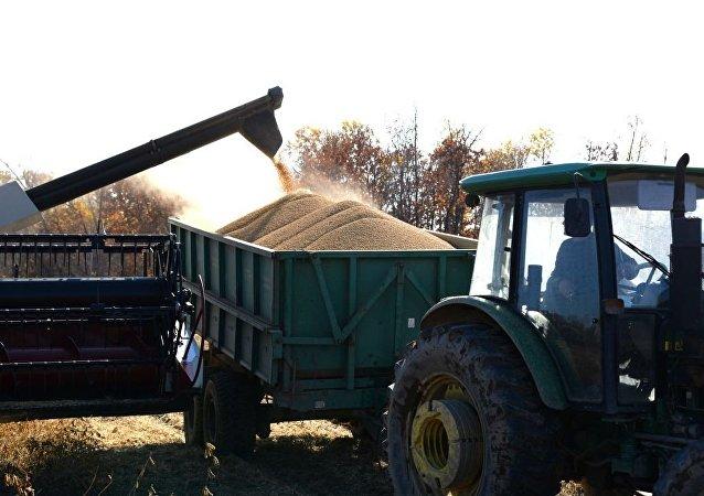 中国投资者将为俄罗斯大豆生产及对华出口投资25亿元人民币