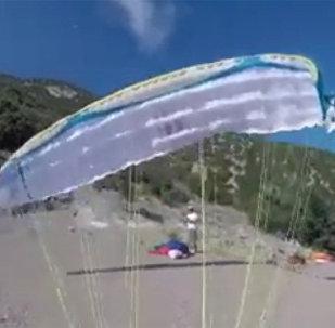 滑翔伞爱好者拍下险与鸟相撞视频