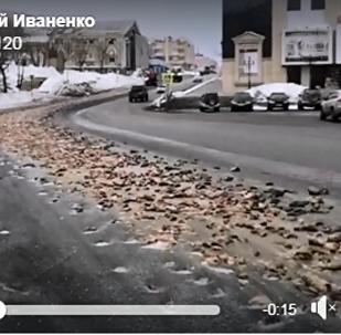 大約8噸的魚類廢料被倒在堪察加彼得巴甫洛夫斯克的路上