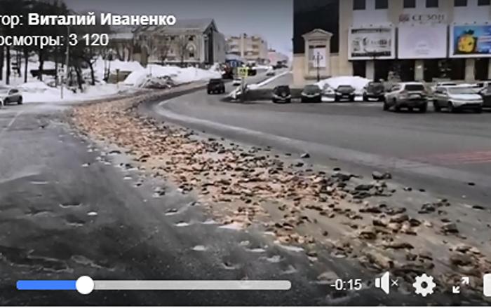 大约8吨的鱼类废料被倒在堪察加彼得巴甫洛夫斯克的路上