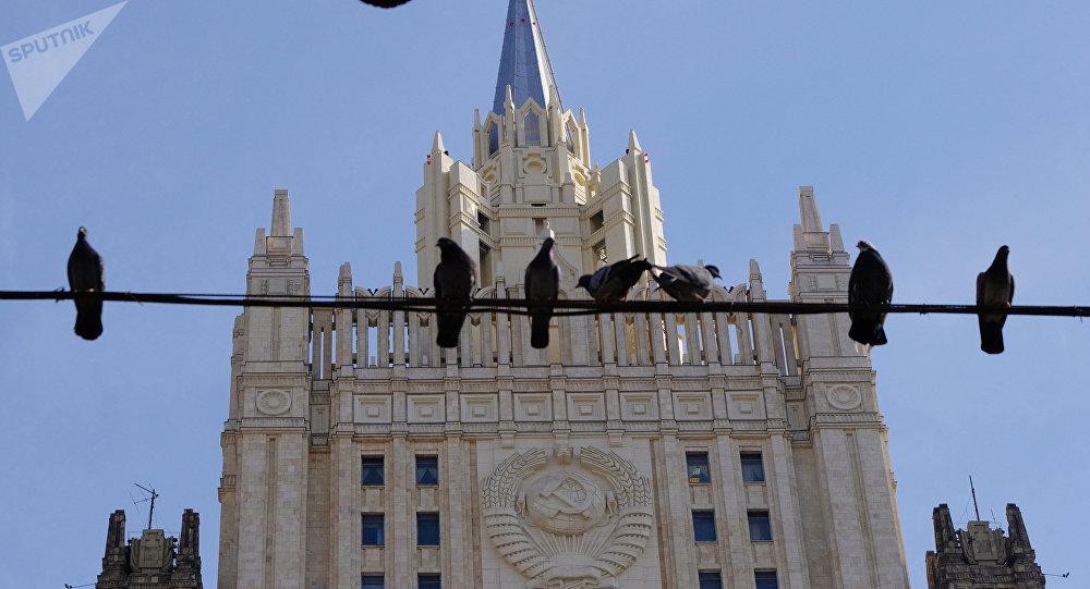 專家建議莫斯科人不要餵鴿子