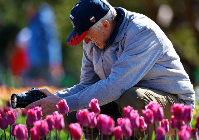 中国代表将首次参加俄鄂木斯克花卉园艺展