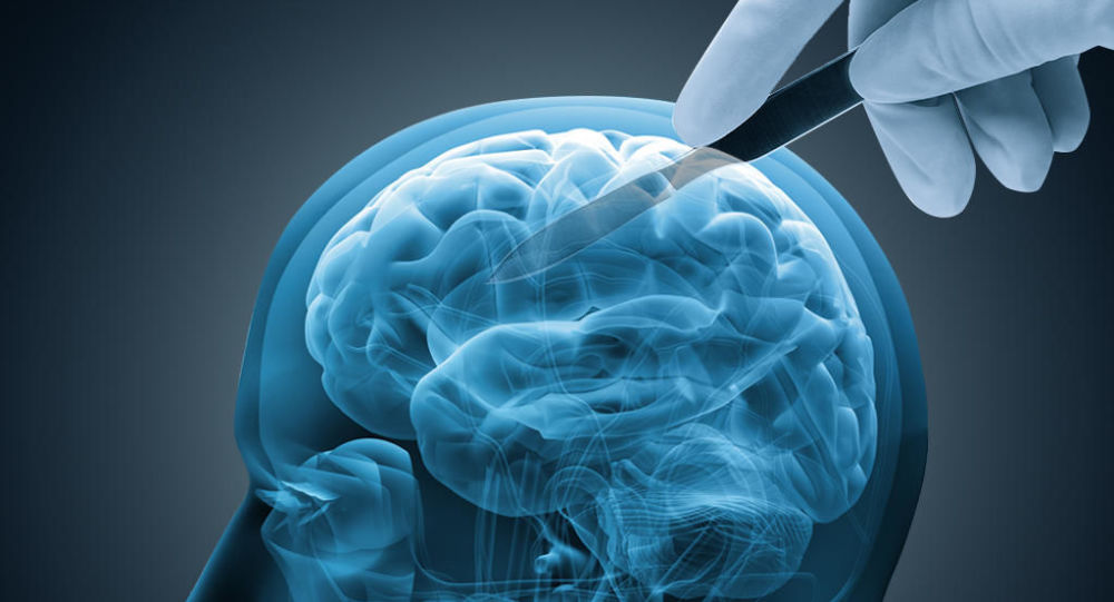 研究發現殺人犯大腦與其他罪犯的主要區別