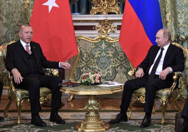 克宮:普京8月27日將與埃爾多安舉行雙邊會晤