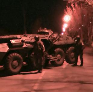 秋明市反恐行动期间击毙两名IS成员