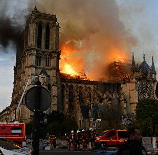 巴黎圣母院重建筹款一天内突破7亿欧元
