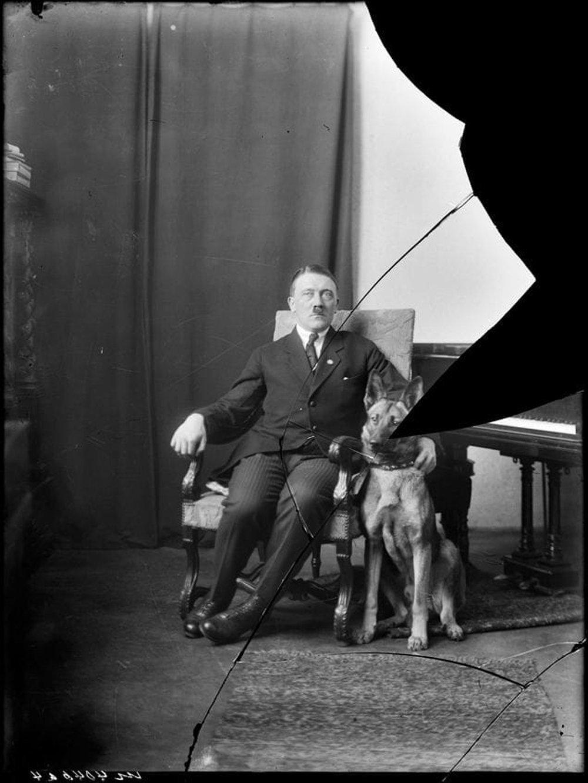 希特勒與德國牧羊犬
