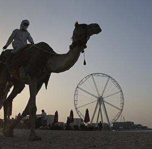 世界最高摩天輪將於2020年在迪拜開放