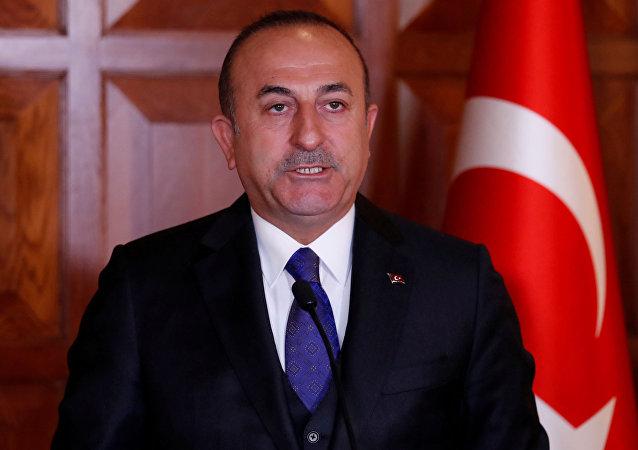 俄總統新聞秘書是優秀土耳其問題專家