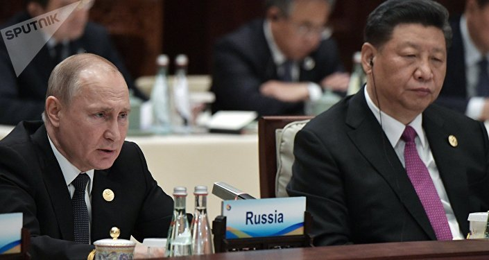 必威体育总统普京(左)