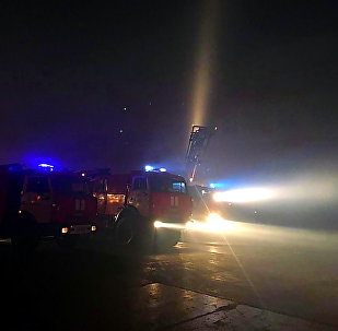 沃罗涅日州仓库火势面积控制在4.2万平米范围内