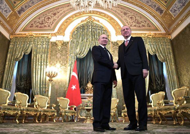 克宮:俄土總統會談將於8月27日在莫斯科舉行