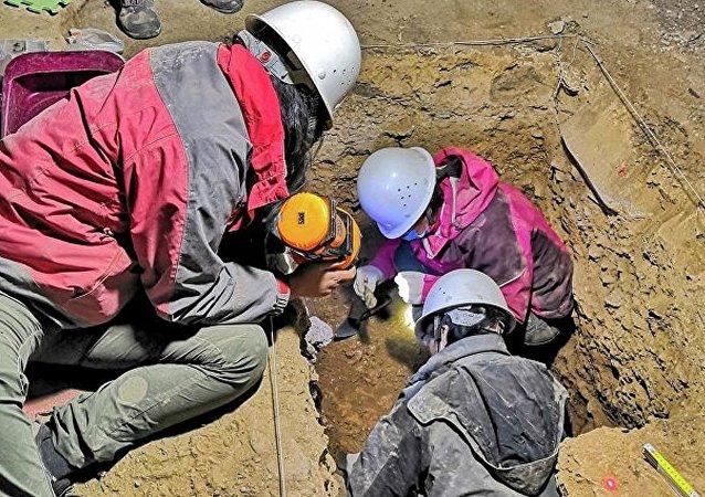 中国甘肃省夏河县白石崖的一处洞穴(考古发掘工作)