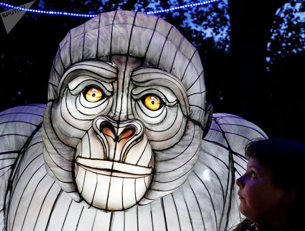 加里宁格勒康德岛中国彩灯节上展出的展品