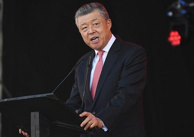 中国驻英国大使刘晓明
