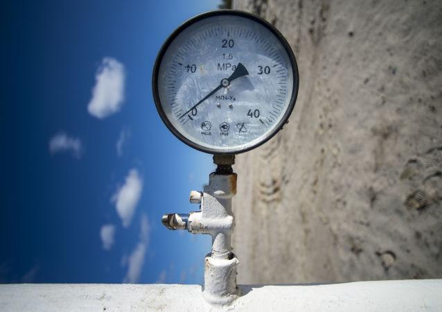 至2035年欧洲对天然气进口的需求将超过此前的预测