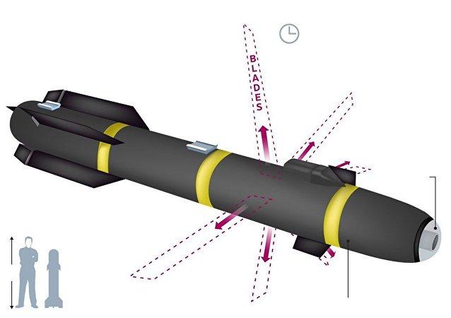 美国带六刃斩刀片之秘密导弹的罕见照片上网