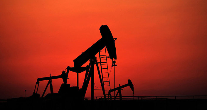 印驻美大使:印度5月已停止购买伊朗石油