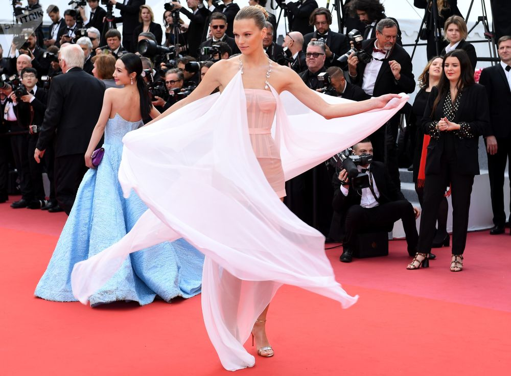 第72届戛纳国际电影节电影《 悲惨世界》首映式红毯上的模特纳丁·利奥波德