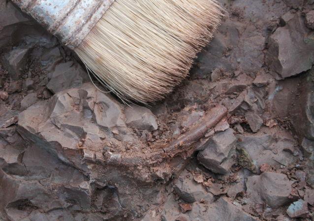 希腊70年代出土的人类遗骸是非洲以外最古老遗骸