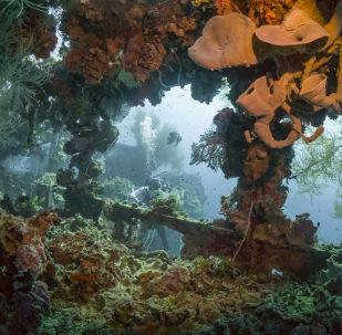 沈沒的水下世界