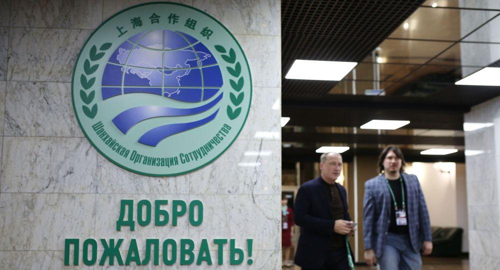 上海合作組織標誌