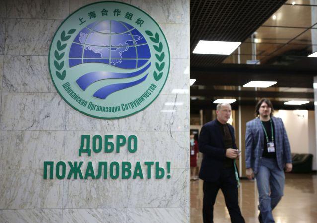 上海合作组织标志