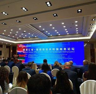 王文涛:地方合作是促进中俄关系的重要力量和经济发展的增长点