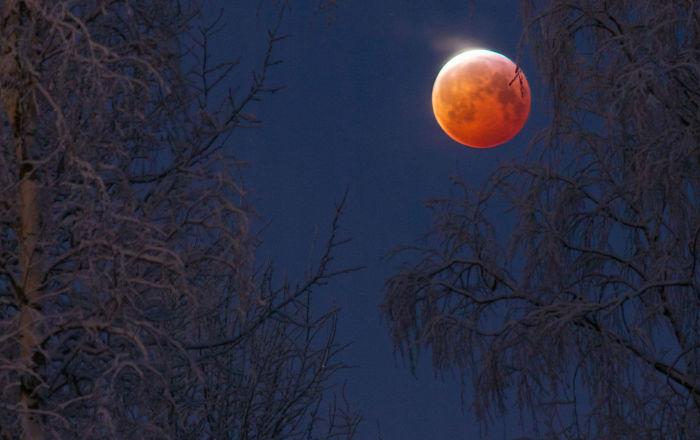 芬兰摄影师Keijo Laitala 的作品Bloodborne