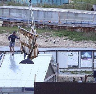 「鯨魚監獄」的虎鯨和白鯨被運到放生地