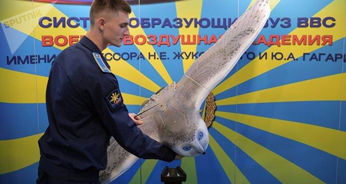 「軍隊-2019」論壇展示雪鴞外形無人機
