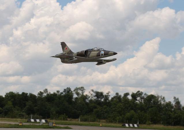 L-39飛機(資料圖片)