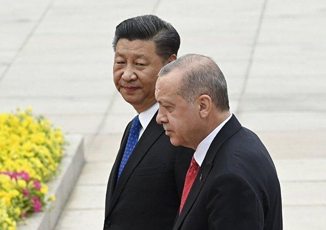 土耳其站在中国一边,玩地缘政治游戏