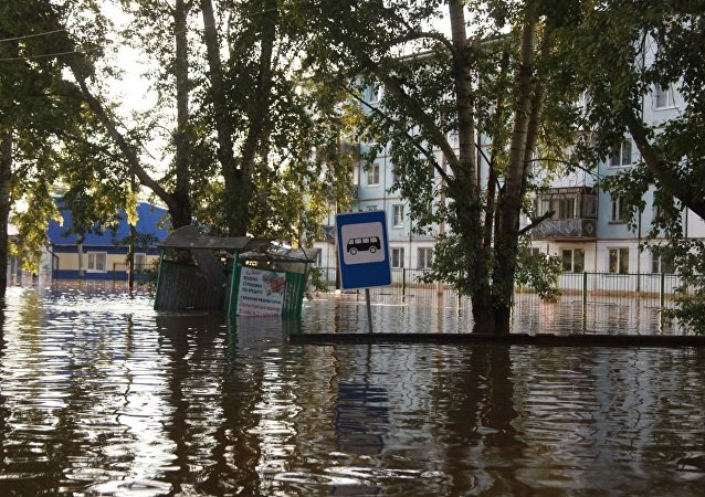 全球氣候變化將使歐洲赤松取代西伯利亞落葉松從而導致洪水經常爆發