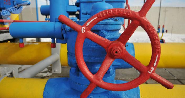 伊朗石油部长:中石油拒绝开发伊朗天然气项目