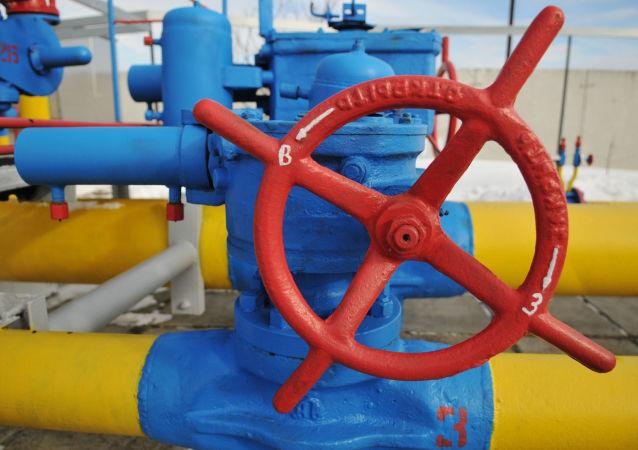 专家:乌克兰尚无法从卡塔尔进口天然气 最好与俄气协商