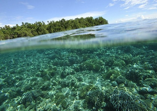 印尼巴釐島