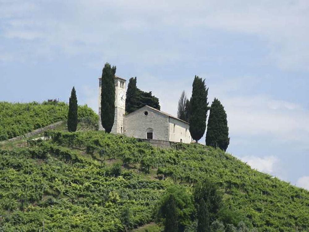 從普羅賽柯葡萄園看聖維吉爾教堂