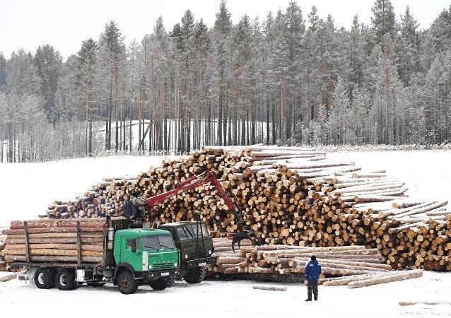 克拉斯諾亞爾斯克邊疆區鋸材倉庫