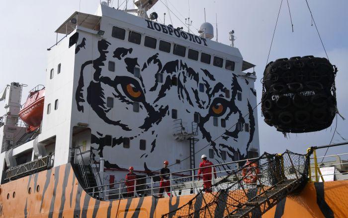"""被涂成老虎色的、停泊在滨海边疆区""""南海""""镇港口的""""交响曲""""号冷藏运输船"""