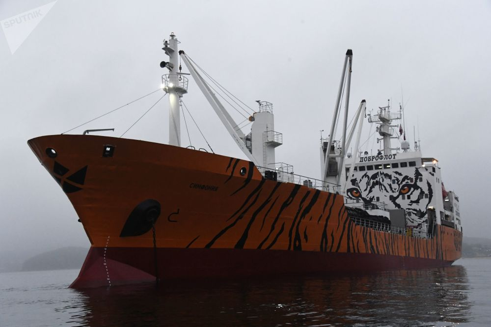 被塗成老虎色的、停泊在濱海邊疆區「南海」鎮港口的「交響曲」號冷藏運輸船