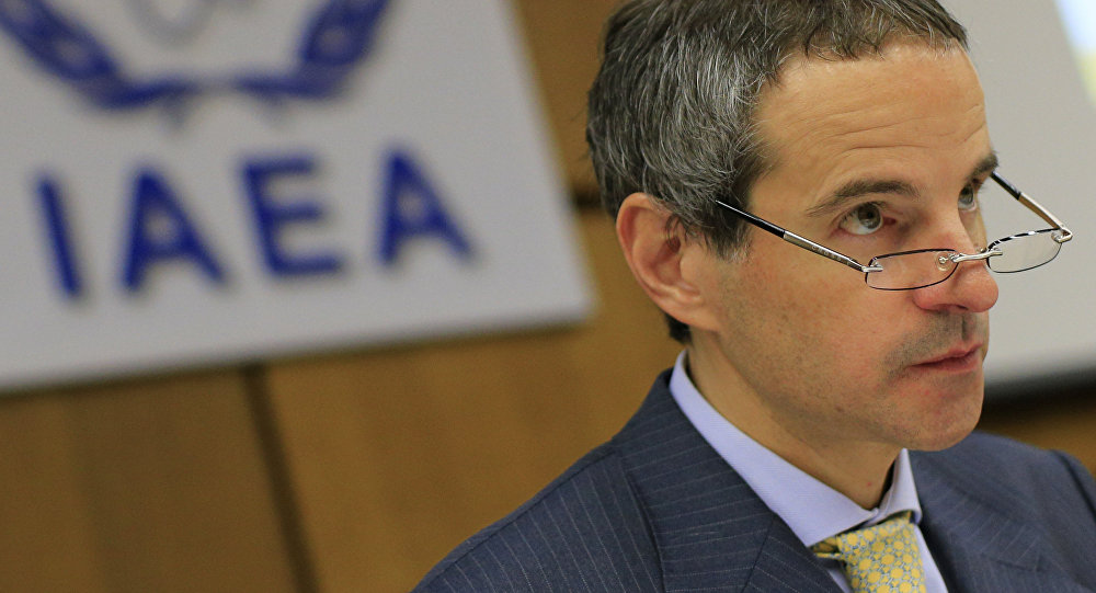 阿根廷常驻维也纳代表可能将担任国际原子能机构总干事